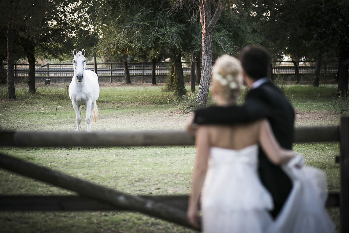 wedding-gallery-generale-10